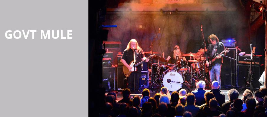 Govt Mule, The Lyric Theatre Birmingham, Birmingham